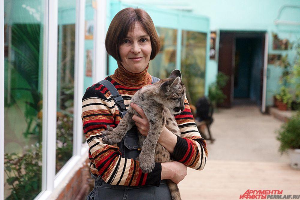 Пермячка Екатерина Мельникова приютила в квартире новорожденную пуму.
