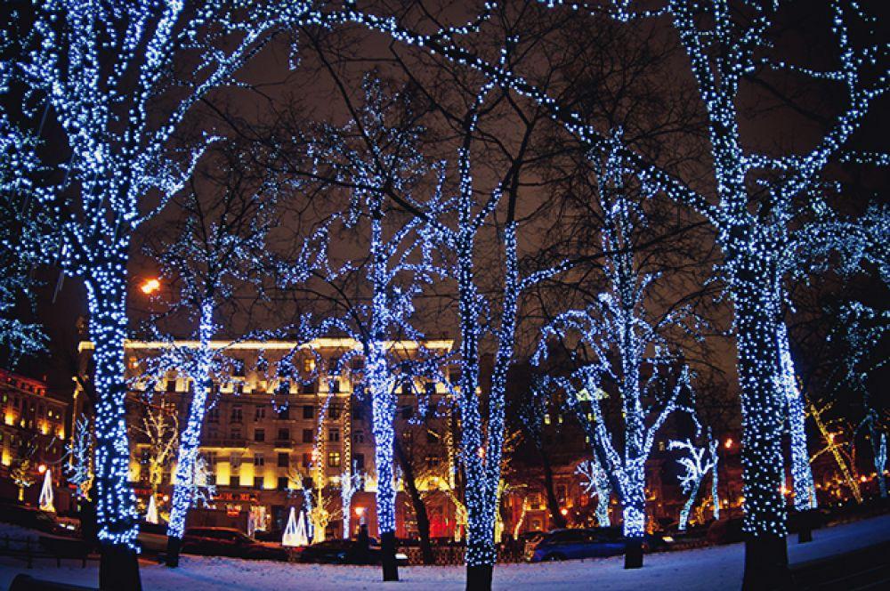 Кроны высоких деревьев на бульварах по традиции будут украшены светодиодными гирляндами.