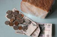 Бюджетного пропитания не хватит на питание.