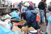 «В странах Центральной Европы, в первую очередь в Германии, заложили демографическую бомбу, которая обязательно взорвётся»