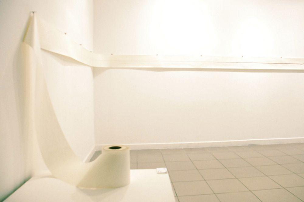 Туалетная бумага. В 1857 году нью-йоркский бизнесмен Джозеф Гайетти выпустил туалетную бумагу, нарезанную аккуратными квадратами и упакованную в пачки. Он так гордился своим изобретением, что на каждом листочке печатал своё имя. Первый серийный выпуск рулонной туалетной бумаги начался в 1890 году в США, на бумажной фабрике Артура Скотта «Scott Paper», однако название фабрики на товаре уже не указывалось.