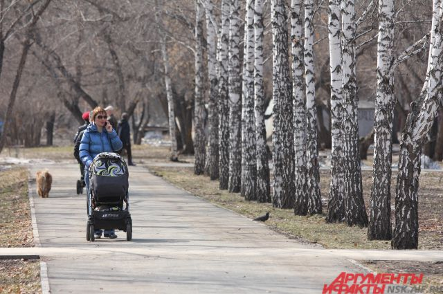 Любимое место прогулок новосибирцев почти недоступно