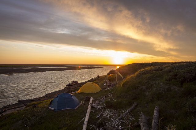 Для исследований учёные выезжают в тундру и живут там в палатках.