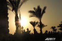 Египетские курорты опустели без туристов.