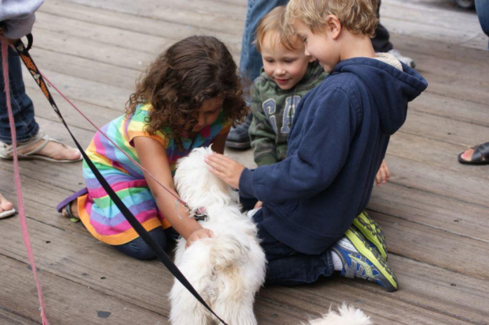 У детей обязательно должны быть животные.