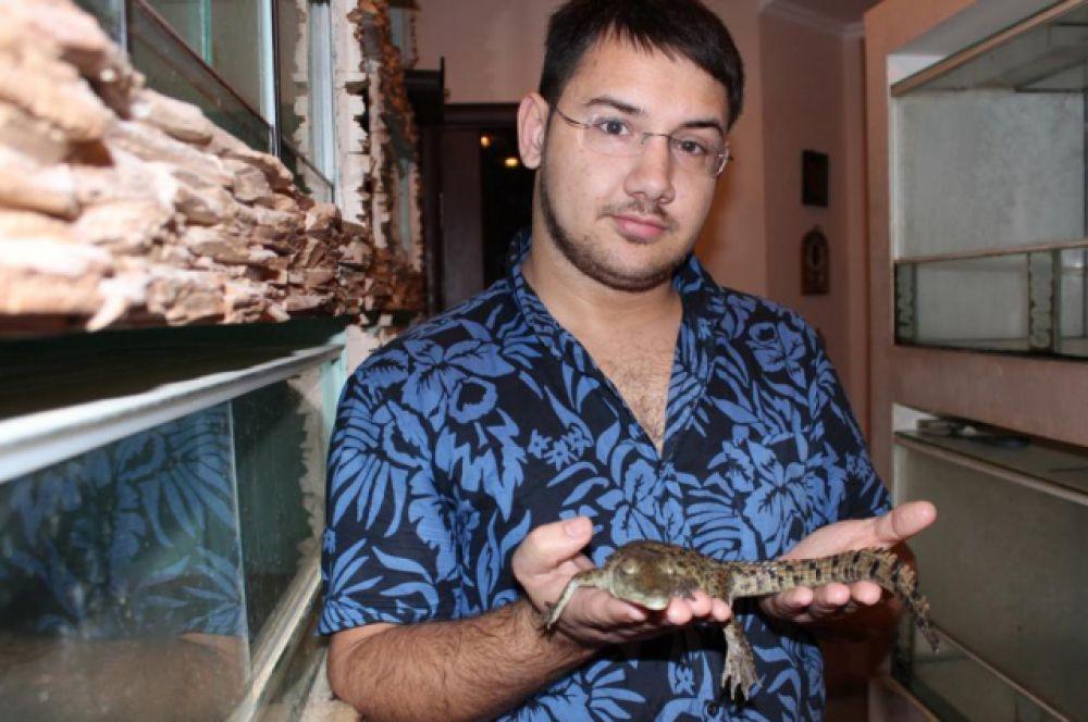 Крокодилы переносят заболевание сальмонеллез, заразное для человека, поэтому ветеринарный врач обязательно должен провести исследования.