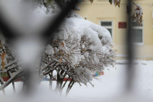 В Омске ожидается потепление до +1 градуса.