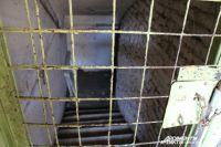 В этом подвале, по словам жильцов, кипятка было по колено.