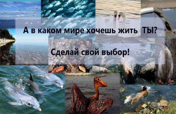 Татьяна, г. Дятьково. Социальный плакат «А в каком мире хочешь жить ты?».