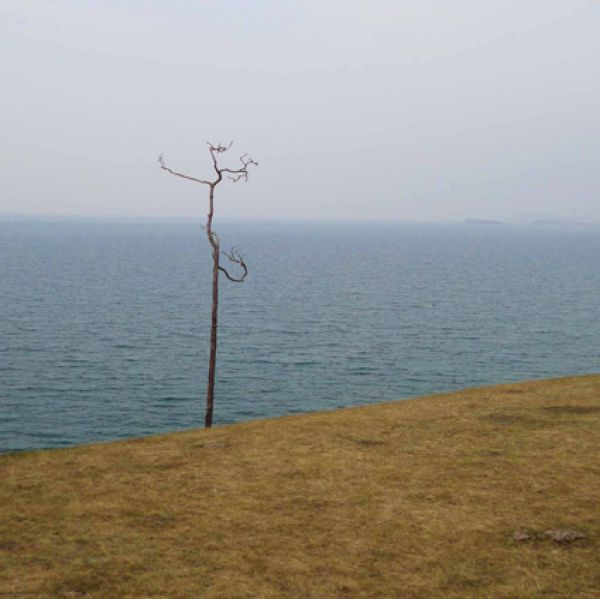 Гибадуллина Любовь, г. Иркутск. Фотография «Сухо, одиноко, когда к воде относимся жестоко».