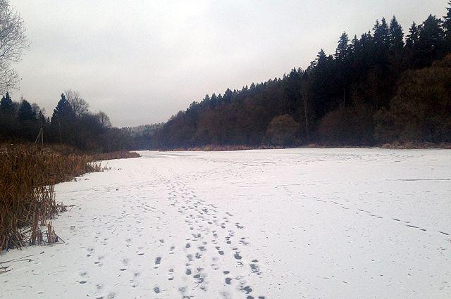 В соцсети появились фотографии следов гулявшего по тонкому льду Омки человека.