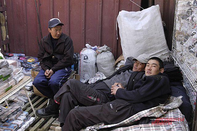 Чаще всего мигранты живут на свалках и в дачных обществах.