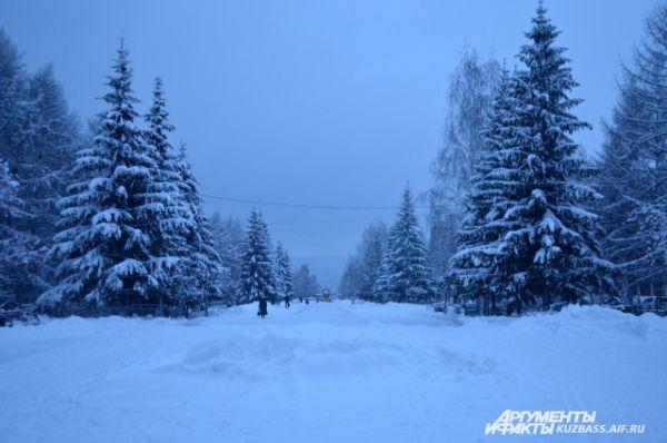 Казалось, находишься где-то далеко за чертой города, в еловом лесу, но никак не в столице Кузбасса.