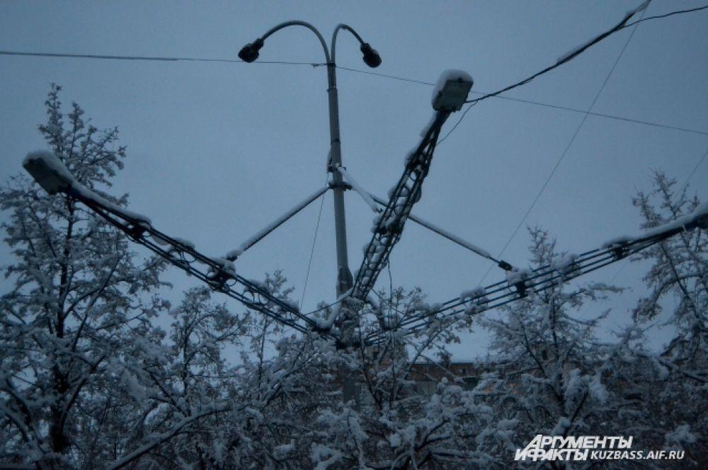 Даже провода и уличное освещение напоминало лапы огромных елей.