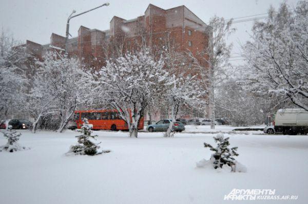 Если бы не яркие автобусы, светофоры, вывески магазинов и люди, встречающиеся в Кемерове, сложилось бы ощущение абсолютно белоснежного города.