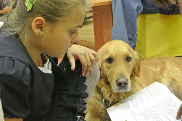 Несмотря на большую загруженность, собаки сохраняют в себе любовь к детям и приходят на уроки чтения в отличном настроении.