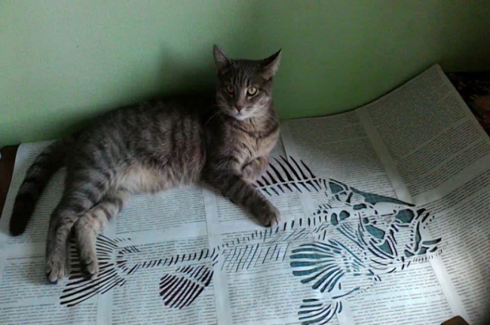 Участник №1 - кот Демон