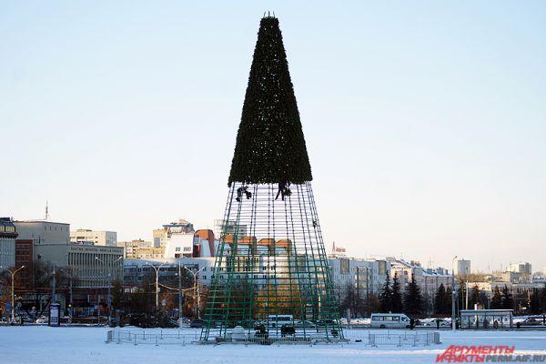 Отметим, высота ели составляет 30 метров.
