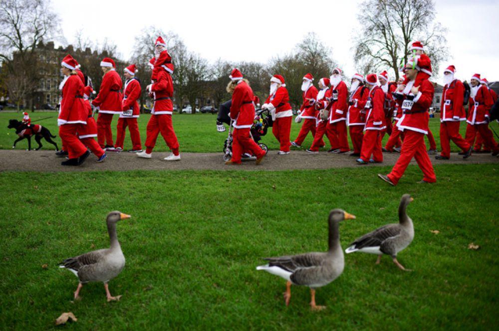 Участники традиционного рождественского забега в Лондоне
