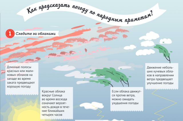 Графика погоды за весь январь
