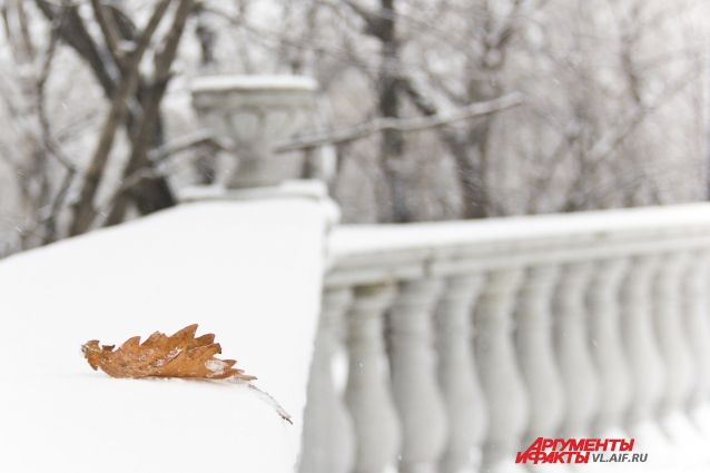 Последний лист осени.