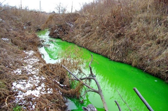 Так выглядела река Сапёрка 20 ноября 2013 года