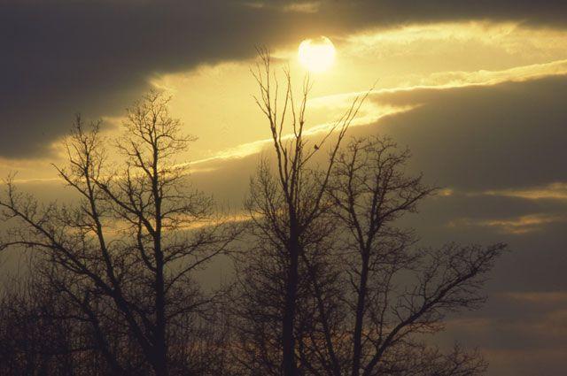 Холодное солнце