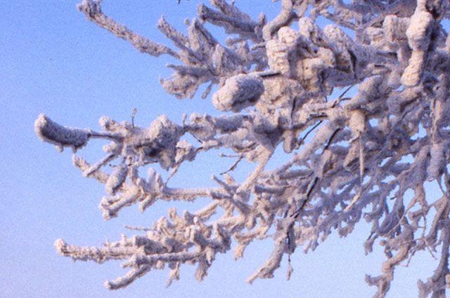 Мороз в Приморье