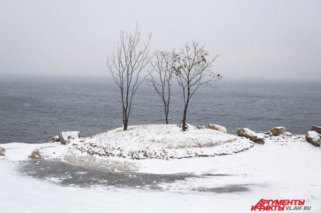 Первый снег обычно долго не держится.