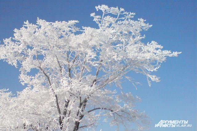 В Приморье сохраняется холодная погода.