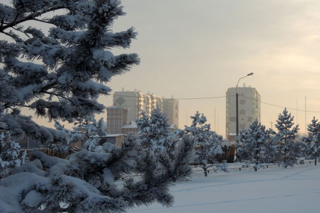 Погода приятно удивит россиян на Новый год!