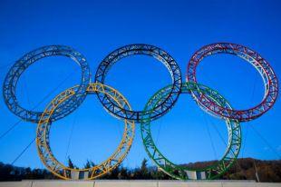Пять омских спортсменов выступят на Олимпийских играх в Сочи.