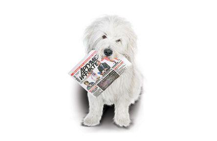 Подписку на наш еженедельник может получить каждый омич!