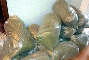 У капитана теплохода в сумке и каюте было обнаружено более 2 кг марихуаны.