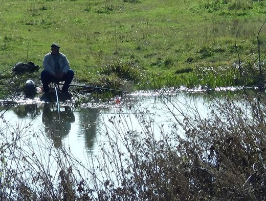 К концу 2013 года в Ростовской области планируется расчистить 18 км участков русел рек.