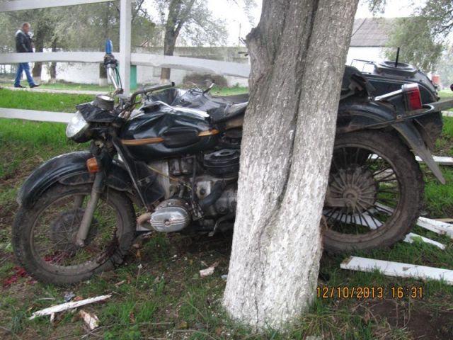 В Ростовской области 21-летний мотоциклист погиб, врезавшись в дерево.