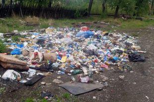 Батайский чиновник обвиняется в загрязнении окружающей среды.