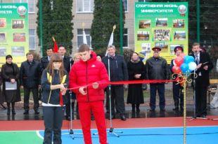 С 2014 года на территории Ростовской области ежегодно планируется вводить по 20 многофункциональных спортивных площадок.