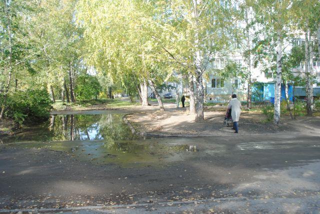 водную преграду приходится обходить по утоптанному газону.