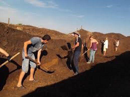 Южноуральские археологи