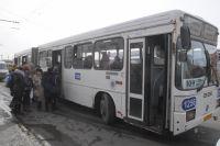 В конце ноября омские автобусы остались без топлива.