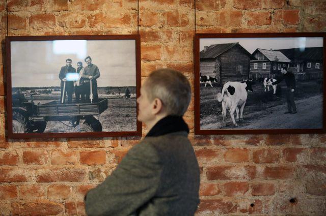 Выставка фотографий с Иосифом Бродским.