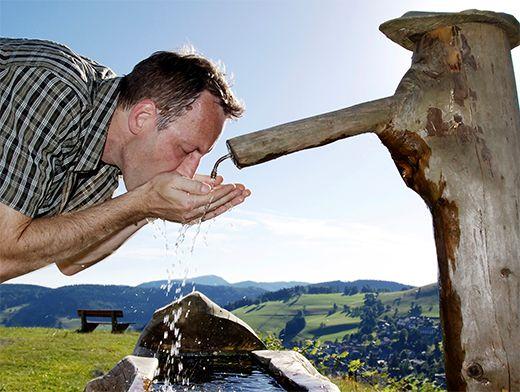 Тошнит хочется пить жарко