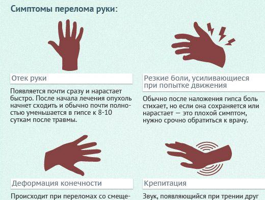 Переломы костей запястья: признаки и лечение | Инфографика ...