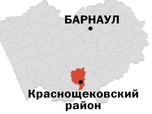 амител новости барнаула и алт края 900 рублей