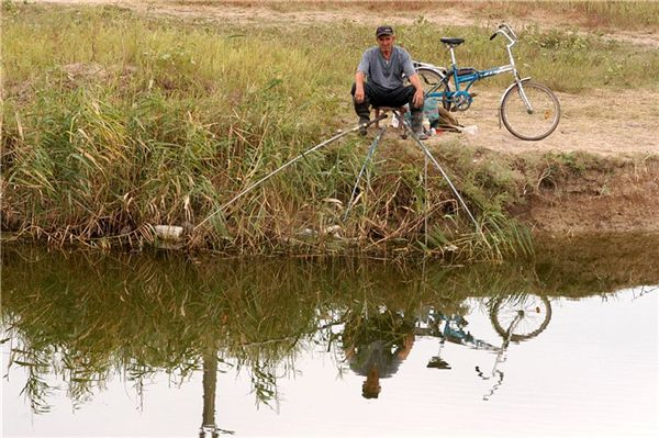когда запрет на рыбалку в 2016 в воронеже