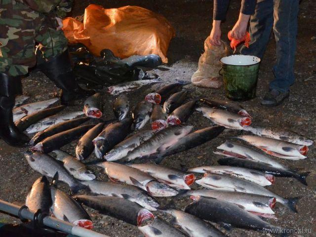 два 14-летних подростка ловили рыбу сетью использование которой запрещено