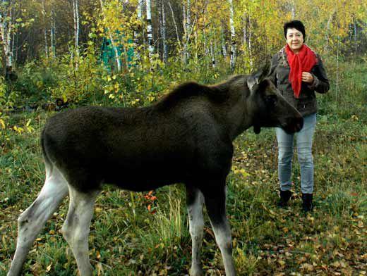 Редактора Яйской районки Ларису Егорову даже всякое зверье в лесах уважает