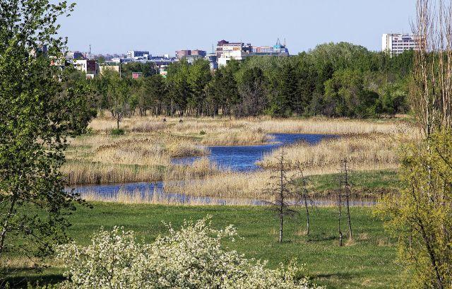 Омск еще может стать городом-садом.