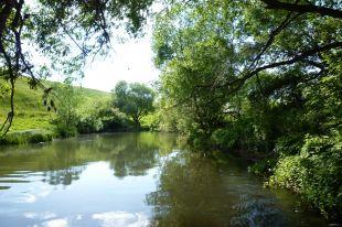 Озера Муромцевкого района поражают своей красотой.